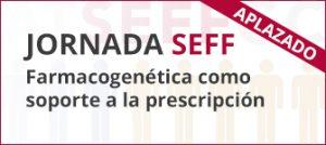 Jornada SEFF 2020